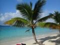 solomon-beach-stjohn