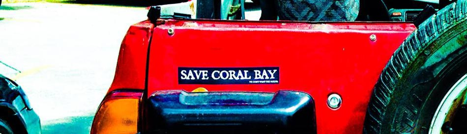 Safe Coral Bay Car Stickers