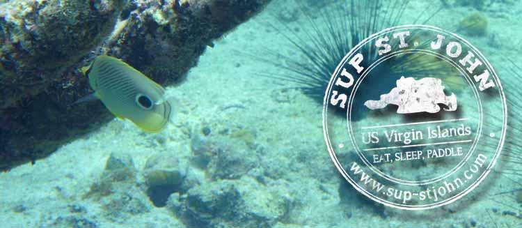 protect-stjohn-reefs