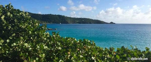 coral-bay-nytimes-ranking